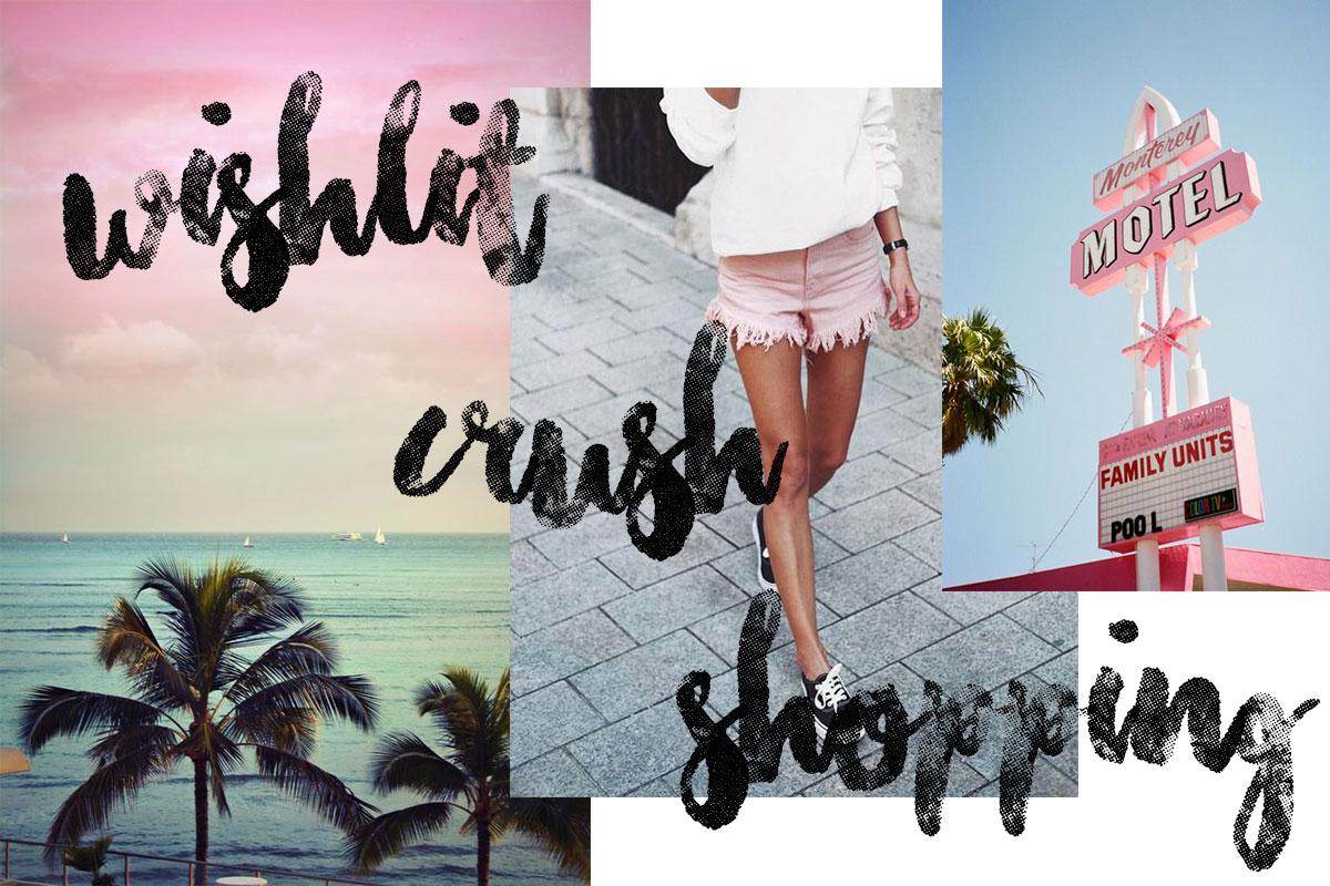 Wishlist Crush & Shopping