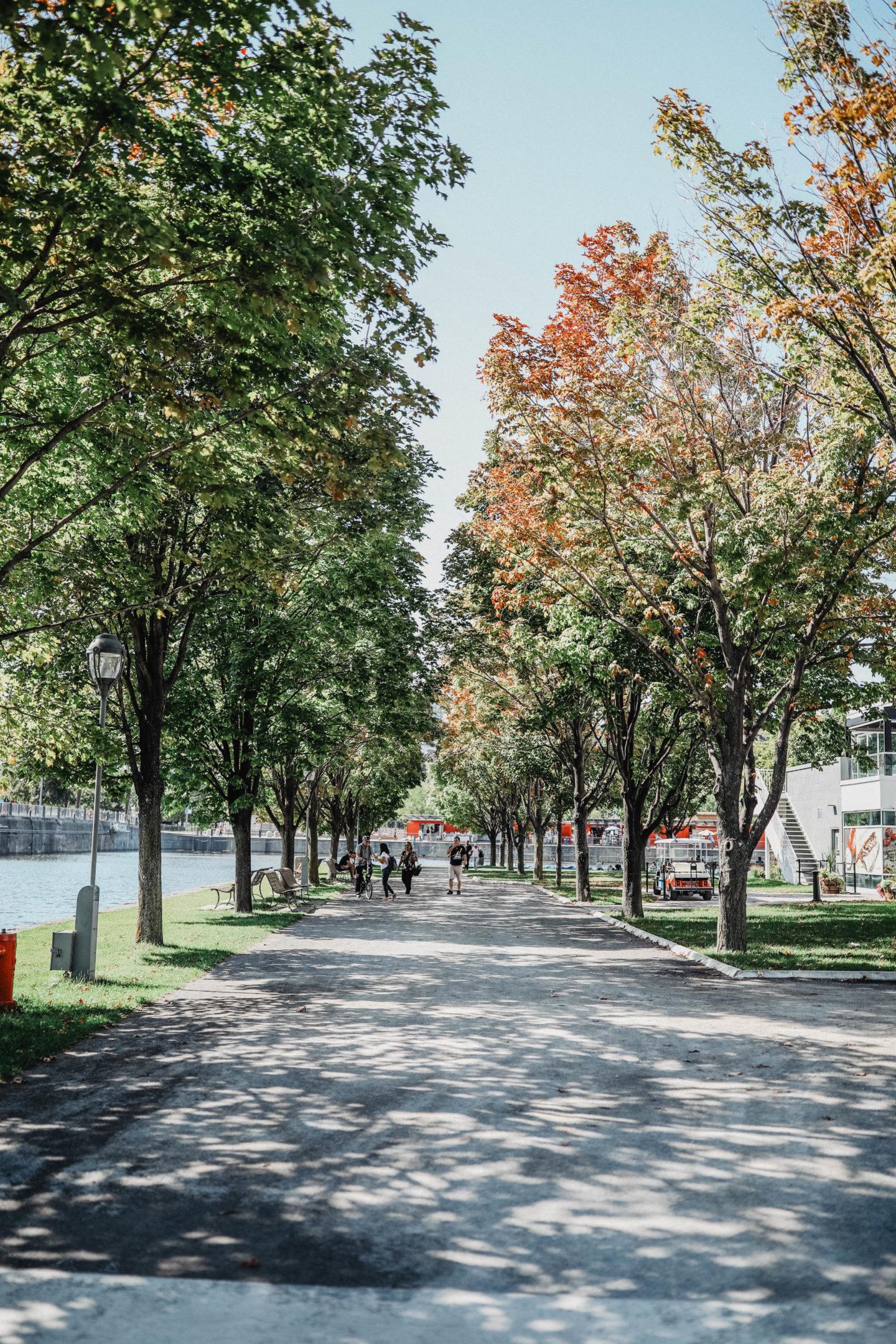 Promenade esplanade du Vieux Port Montréal marie and mood blog