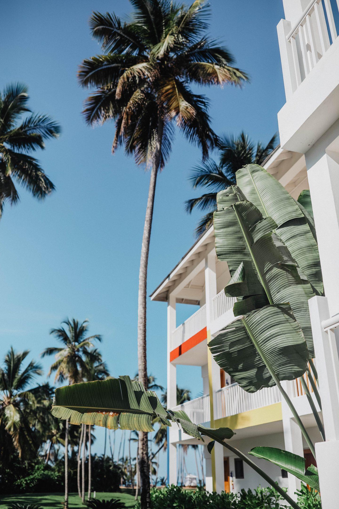 Resorts V Samana